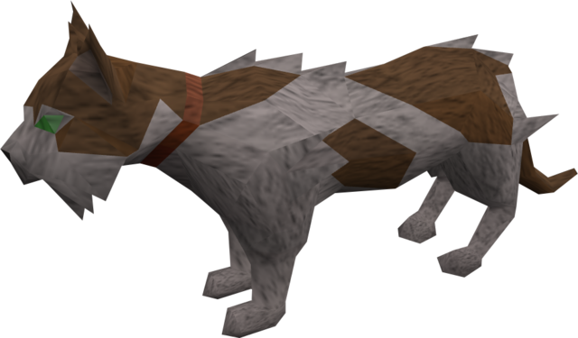 File:Wily cat (white and brown) pet.png