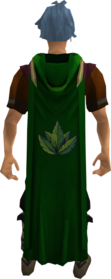 Hooded herblore cape equipped