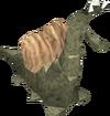 Snail detail
