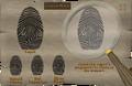 Rick Turpentine fingerprint.png