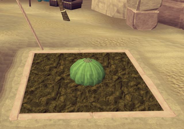 File:Potato cactus2.png