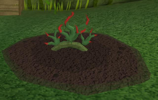 File:Vine herbs5.png