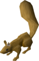 Squirrel (dark brown) pet.png