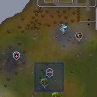 Fairy ring AKQ location