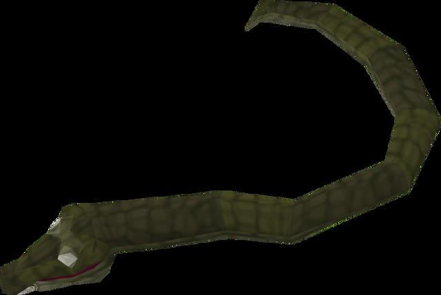 File:Jungle snake.png