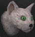 Pet cat (white) chathead
