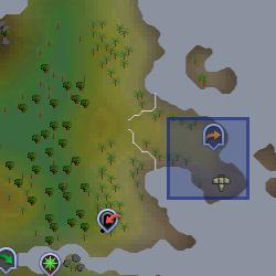 Gnome glider (Karamja) location