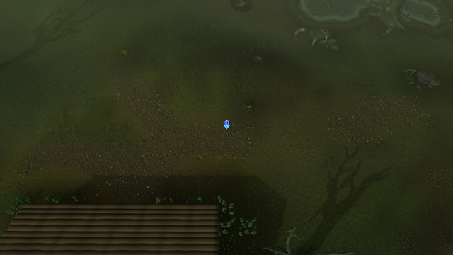 File:PHAS Lumbridge Swamp.png