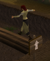 Gnome agility1.png
