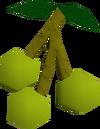 Jangerberries detail