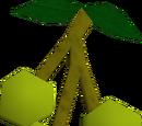 Jangerberries