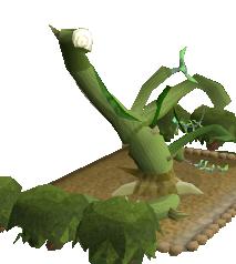 File:Wild jade vine 3.png