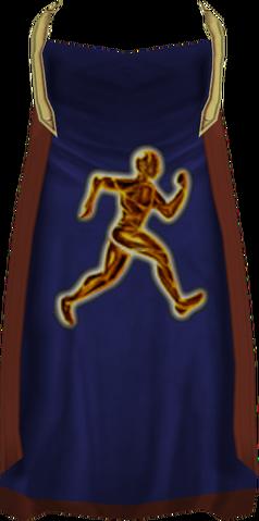 File:Agility cape (t) detail.png