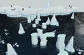 Penguin hunting area.png