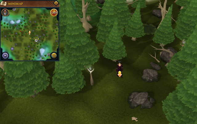 File:Scan clue Tirannwn north-east of Tirannwn lodestone.png