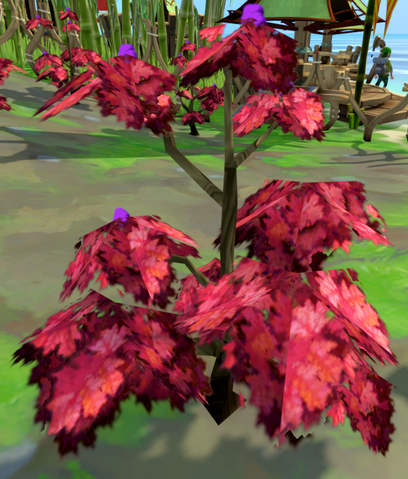 File:Rumberry bush.png