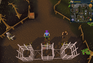 Compass clue Varrock north of pillory
