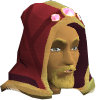 File:Completionist hood (t) chathead.png