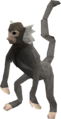 Monkey (grey and white) pet.png