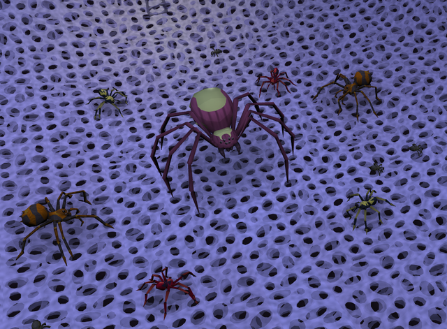 File:Spider court 1.png