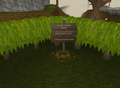 Scruffy's grave.png