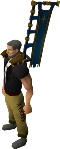 File:Saradominist banner equipped.png