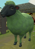 Sick-looking sheep (2) (dyed).png
