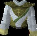 Third-age druidic robe top detail.png