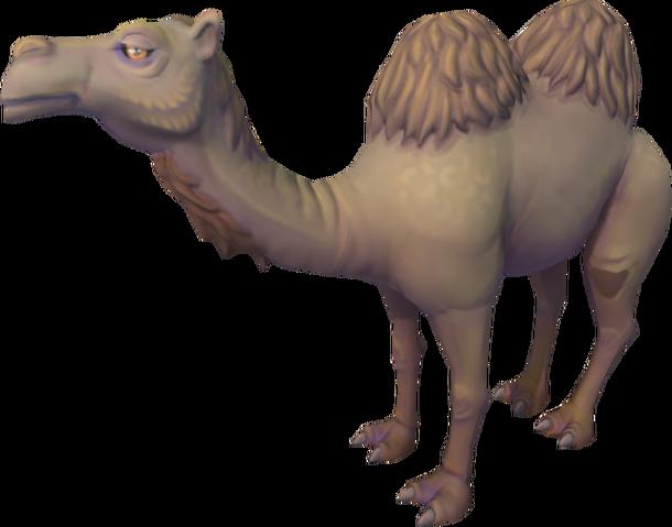File:Al the Camel.png