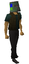 File:Adamant helm (h3) equipped old.png