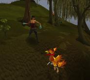 Heroes quest - Fire bird