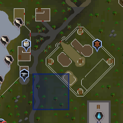 File:Evil Tree (Ranging Guild) location.png