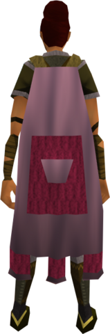 File:Team-1 cape equipped.png
