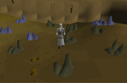 Mining Guild old 1