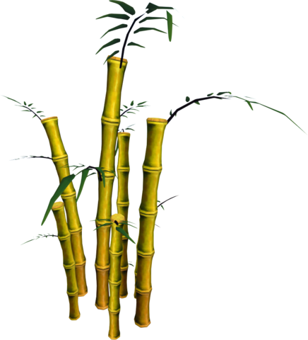 File:Golden Bamboo (tree).png