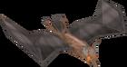 Fruit bat old