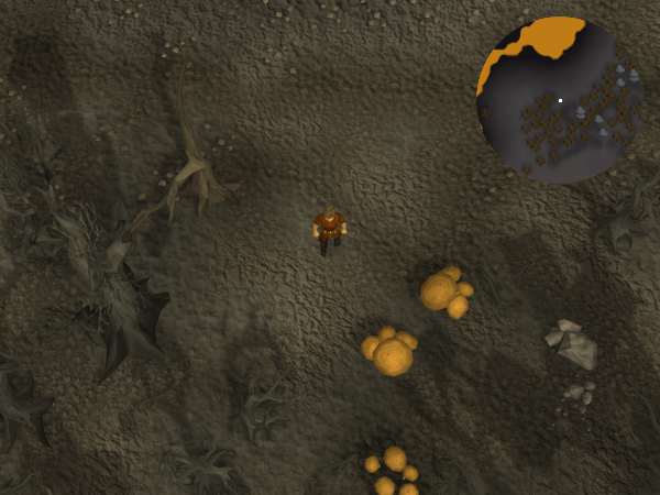 File:Compass clue Wilderness east of Chaos Temple.png