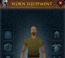Worn Equipment