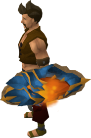 Dragonfire shield (magic) equipped