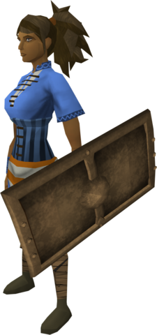 File:Bronze sq shield equipped.png