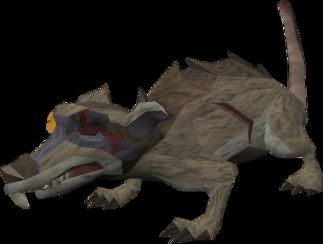 File:Dungeon rat.png