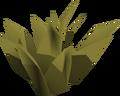Gold herb detail.png