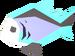 Raw rainbow fish detail