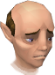 File:Gnome Waiter chathead.png