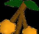 Kalferberries