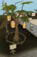 Protected tree fully grown.png