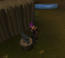 Barbarian Training
