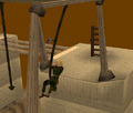 Brimhaven Agil - rope swing.png