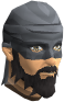 File:Swashbuckler mask chathead.png