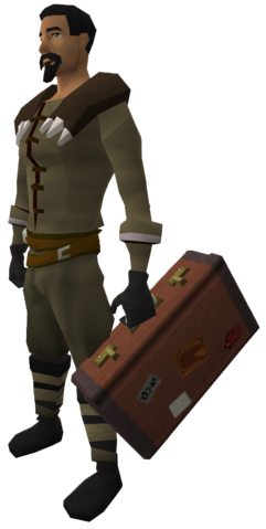 File:Off-hand suitcase equipped.png